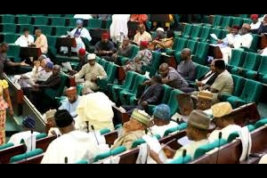 Reps knock Buhari over killings by herdsmen, says no political will to tackle crisis