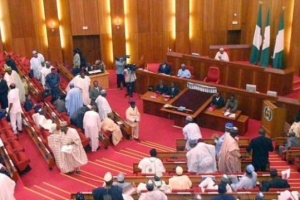 How PDP senators got back member about cross-carpeting to APC