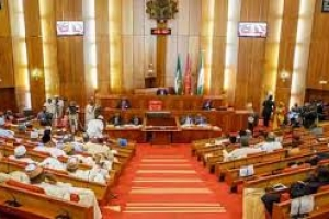 Senate summons service chiefs, others over proliferation of fire arms