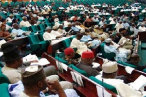 Kajuru crisis: Reps condemn killings in Kaduna, order committees to investigate