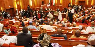 Senate okays investigation of Buhari govt's alleged violations of human rights, Nigerian Constitution