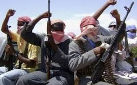 Boko Haram steals 200 cows, 300 sheep, goats in Borno - NEMA