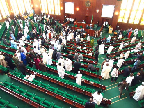 Reps probe mass resignation of soldiers fighting Boko Haram