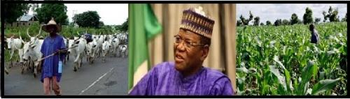 Farmers-Herdsmen Conflict: The Jigawa Solution