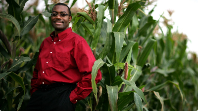 The Nigerian Agricultural Sector Beyond Akin Adesina