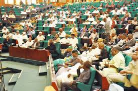 Reps members bicker over Buhari's 'Sickness'