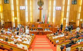 Nigerian lawmakers berate Police over missing 2017 budget documents, demand apology from IGP
