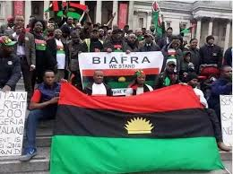Igbo leaders are those sabotaging actualization of Biafra, they are irrelevant - IPOB replies Kwankwaso