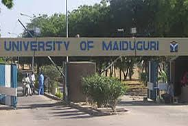 Boko Haram: Nigerian govt is failing us - UNIMAID lecturers, staff, students cry out