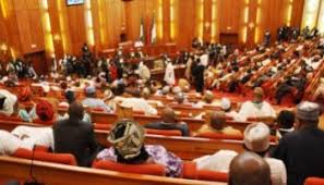 Senate screens 12 REC nominees from Presidency after vowing not to
