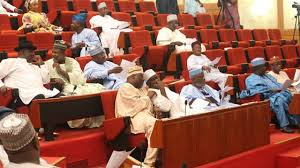Senate effects major amendments to 1999 Constitution