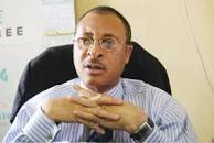Four years enough to run an impactful government - Pat Utomi