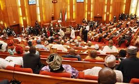 Senate rejects one of Buhari's REC nominees